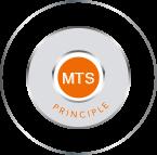 MTS-formula